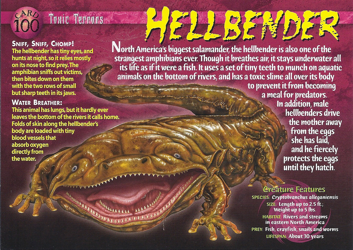 Hellbender | Wierd N'wild Creatures Wiki | Fandom powered by Wikia