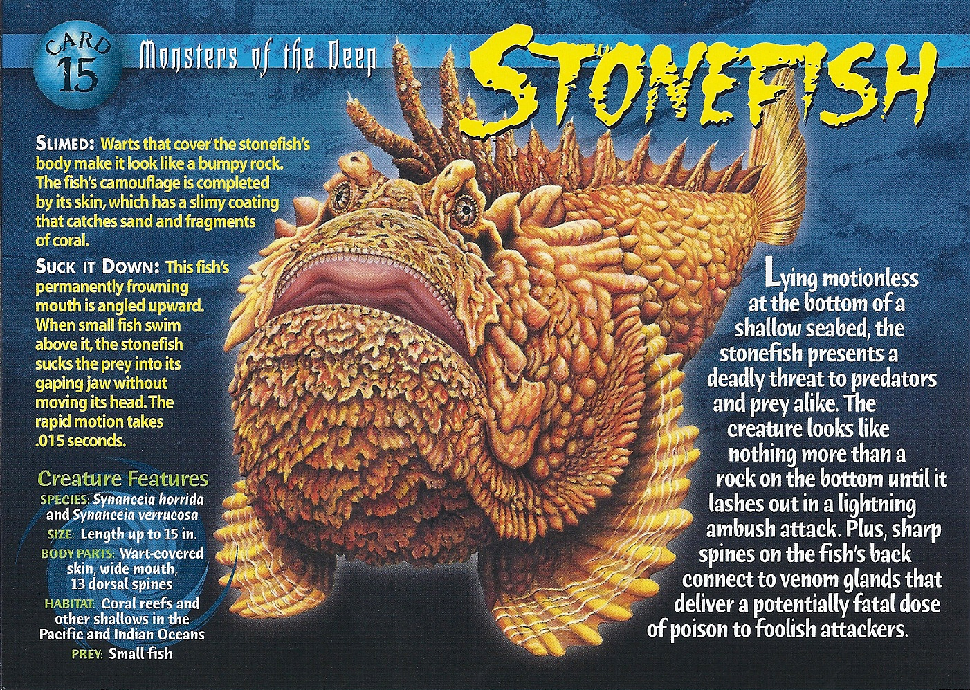 Stonefish wierd n 39 wild creatures wiki fandom powered for Fish that looks like a rock