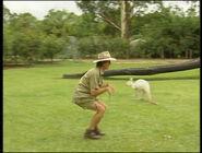 LearnMoreAbouttheAnimals-Kangaroo