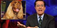 The Colbert Report/Episode/514