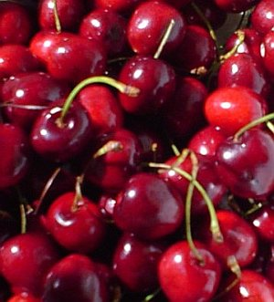 File:BingCherries.jpg
