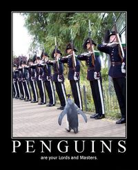 Penguinlords