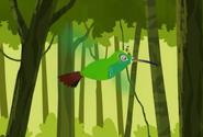 Hummingbird.wk