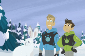 Snow Runners.Wild Kratts-01