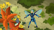 Bee Martin