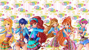 Winx Club Youtube and Google Pic