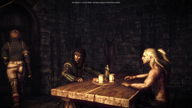 File:Witcher 2 assassins of kings the-3.jpg