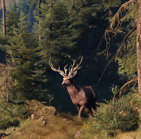 File:Tw3 promo deer.png