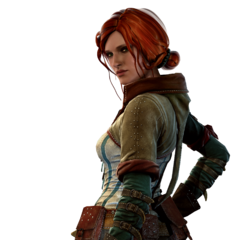 in The Witcher 2.