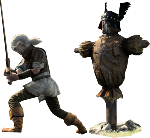 File:Tw3 Young Ciri versus Dummy.png