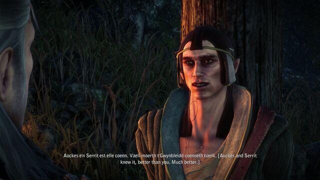 File:Tw2 screenshot elvenprisoner.jpg