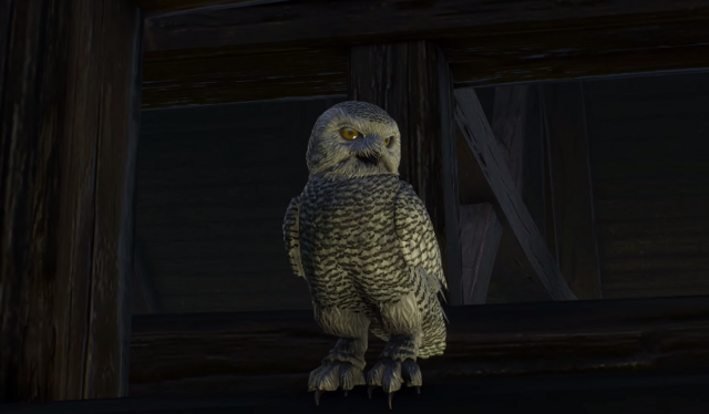 File:Owl Philippa.png