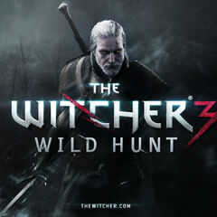 Geralt about to attack someone