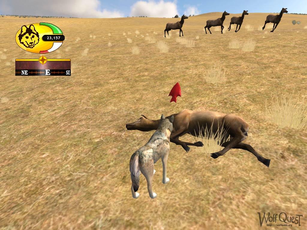 Игра Компьютерная Волк Овце Не Собака