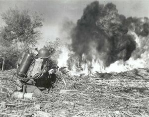 US M2 flamethrower, 33rd Infantry