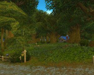 Wald von Elwynn.jpg