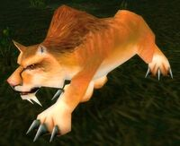 Feral Mountain Lion