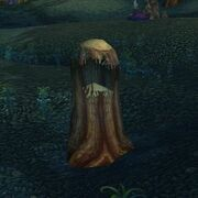 Hollowed Out Tree
