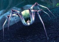 Spindleweb Lurker