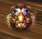 Alliance Moonkin Hatchling