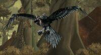 Grishna Raven