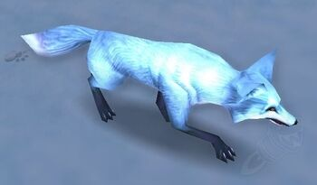 Image of Arctic Fox Kit