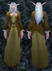Archmage Robe, Stone Background, NE Female