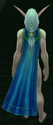 Glyphed Cloak, Grass Background, NE Female