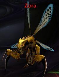 Zora-wasp