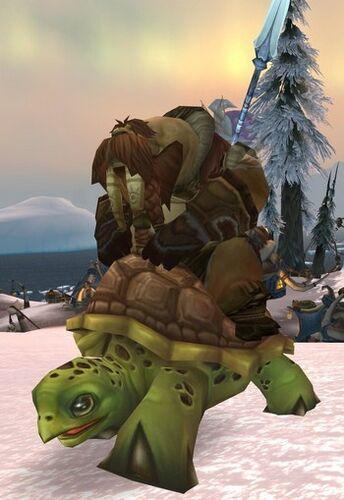 Kamagua Turtle Rider