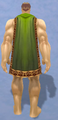 Conjurer's Cloak, Snow Background, Human Male.png