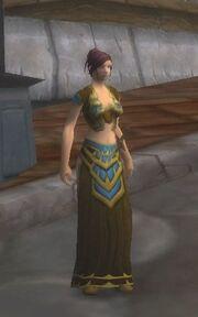 Windchaser Robes