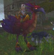 Red Hawkstrider