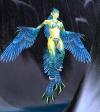 Frostfeather Witch