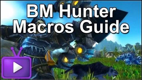 ► Mists of Pandaria - BM Hunter Macros Guide - 1 Shot Macro Included