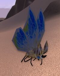 Gilded Moth