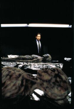 Mulder Pentagon Alien bodies Redux