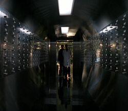 Ova Storage Memento Mori