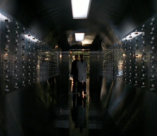 File:Ova Storage Memento Mori.jpg