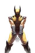 Wolverine Vol 3 73 Variant Frame Textless