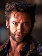 Wolverine-18