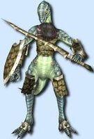 Shield Igna