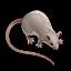 Denemozumi Mouse icon.png