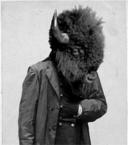 Buffalo face cropped