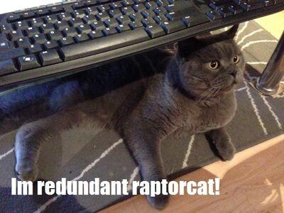 Redundant raptorcat