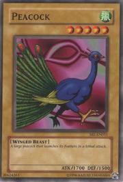 Peacock-SRL-EN-C-UE