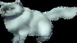 Louise, la chatte de Telma