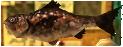 Majora's Mask 3D Fish Fragrant Reekfish (Swamp Fishing Hole)