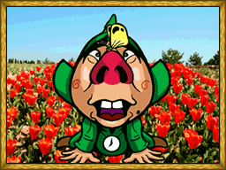 File:Tingle's Balloon Fight DS Bonus Gallery 7.png