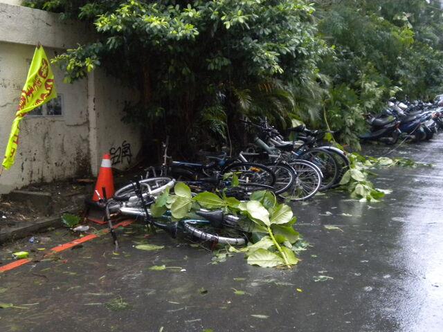 檔案:凡那比颱風的摧殘-南台科技大學.jpg